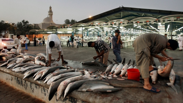 Workers cut shark fins