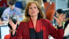 Sandra Pupatello Ontario Liberal leadership bid