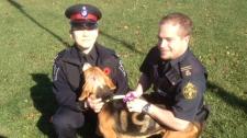 OSPCA investigates injured dog Aurora