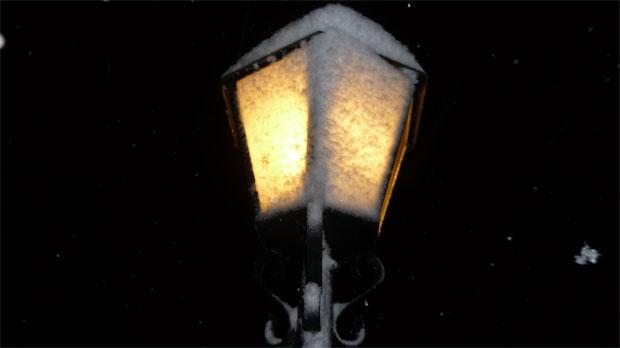 Snow-covered street light
