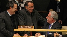 Palestinian Foreign Minister Riyad Malki