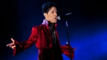 In this picture made available on Wednesday, Aug. 10, 2011, U.S. musician Prince performs during his concert at the Sziget Festival on the Shipyard Island, in northern Budapest, Hungary, on Tuesday, Aug. 9, 2011. (AP Photo/MTI, Balazs Mohai)