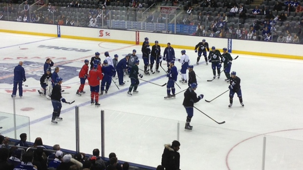 Toronto Maple Leafs players take part in an open practice at the Air Canada Centre on Thursday, Jan. 17, 2013. (Cam Woolley/CP24)