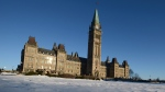 Snow covers the Parliament Hill lawn in Ottawa on Thursday, Jan. 17, 2013. (The Canadian Press/Sean Kilpatrick)