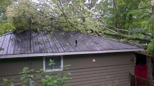 tree house, Norland, Ontario, tornado,