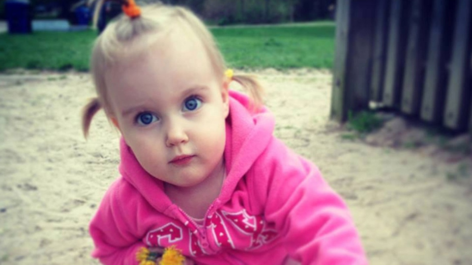 Two-year-old Eva Ravikovich was found dead at a Toronto-area daycare on July 8, 2013. (Facebook)