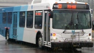 Transit announcement in York Region