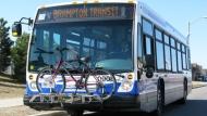 Brampton Transit