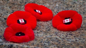 Poppies are placed on a cenotaph after a Remembrance Day service. (The Canadian Press/Darryl Dyck)