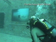 Underwater art gallery