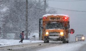 DIGITAL EXTRA - school bus