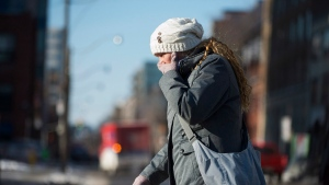 A pedestrian braves the cold in Toronto during a cold snap across southern Ontario on Tuesday, Jan. 7, 2014. ( The Canadian Press/Aaron Vincent Elkaim)