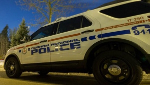 Durham Regional police say one of their police dogs caught a theft suspect in a Clarington field on Saturday.