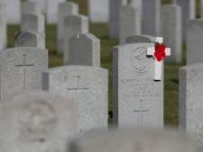 Poppies are seen on a grave at the National Military Cemetery in Beechwood Cemetery on Remembrance Day in Ottawa on Wednesday, Nov. 11, 2009. (THE CANADIAN PRESS/Pawel Dwulit)