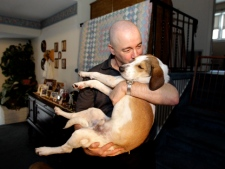 "Joe Dwyer, of Nutley, N.J., plays with his new dog Daniel, also known as the ""Miracle Dog,"" Wednesday, Nov. 16, 2011. The beagle mix got its nickname after it survived an Alabama dog pound gas chamber. Volunteers named the dog ""Daniel"" after the biblical figure who survived the lion's den. (AP Photo/Julio Cortez)"