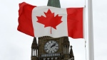 A Canadian flag blows in front of the Peace Tower on Parliament Hill in Ottawa. (The Canadian Press/Sean Kilpatrick)