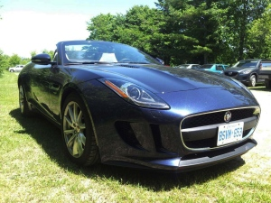 The 2014 Jaguar F-Type convertible.