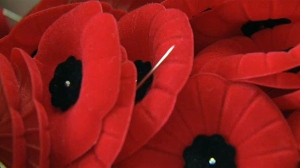 Money raised from the sale of the poppies goes to help veterans.