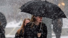 A woman uses an umbrella to take cover in Toronto in this file photo. (The Canadian Press/Nathan Denette)