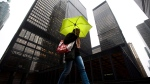A pedestrian shields herself from rain under an umbrella in downtown Toronto on Friday, March 4, 2011. (The Canadian Press/Darren Calabrese)
