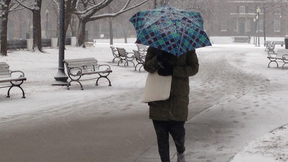 Winter weather is seen in Toronto in this undated file photo.