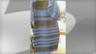 The black blue gold white dress