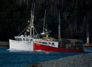 Fishing boats loaded with lobster traps head from Eastern Passage, N.S. on Tuesday, November 27, 2012 as the lobster season in southwestern Nova Scotia got underway. THE CANADIAN PRESS/Andrew Vaughan