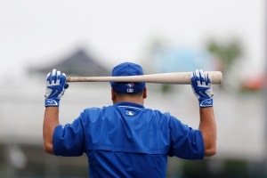 Toronto Blue Jays' Dioner Navarro rests a bat on his head before batting practice for an exhibition spring training baseball game against the Minnesota Twins, Tuesday, March 24, 2015, in Fort Myers, Fla. (AP Photo/Brynn Anderson)