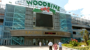 Expanded gambling at Woodbine on the agenda at last council meeting before ...