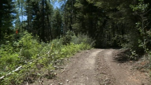 missing camper