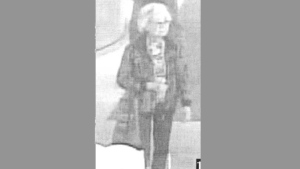 A suspect wanted in connection with the theft of an expensive designer purse from the Art Gallery of Ontario is pictured in this police handout photo.