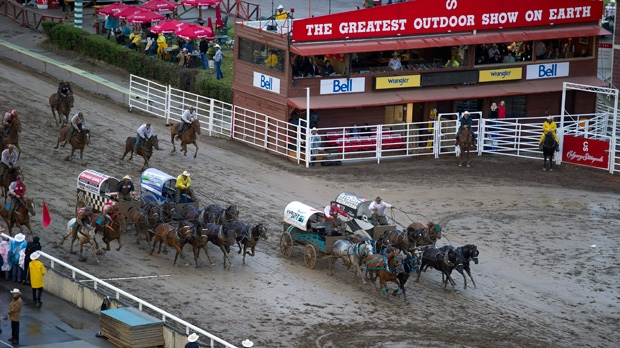 Horse At Calgary Stampede Euthanized After Breaking Leg In