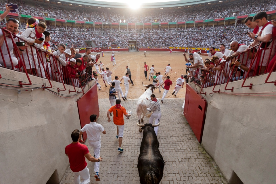 Revelers are chased by Jandilla's ranch fighting bull on their entrance to the bullring, during the running of the bulls of the San Fermin festival in Pamplona, Spain, Tuesday, July 7, 2015. Revelers from around the world turned out here to kick off the festival with a messy party in the Pamplona town square, one day before the first of eight days of the running of the bulls. (AP Photo/Daniel Ochoa de Olza)