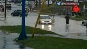 Flooding reported north of the city as heavy rain batters GTA