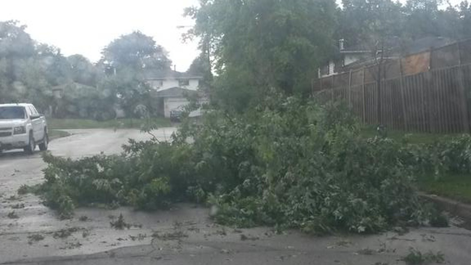 A tree lays strewn in the road after thunderstorms swept through Scarborough Sunday July 19, 2015. (@fitstrongsmart /Twitter)