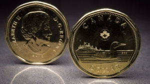 Two loonies are pictured in North Vancouver, B.C. on Monday, Jan. 26, 2015. (The Canadian Press/Jonathan Hayward)