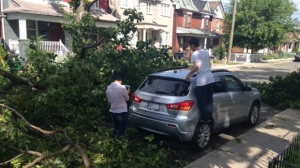Nearly 50,000 customers without power in Ontario after storm