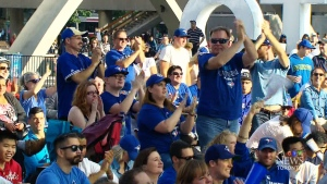 CTV Toronto: Jays fans come together