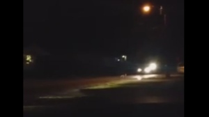 A police cruiser is seen in an image from a video posted on Facebook, heading towards a coyote on a residential street in Collingwood on Oct. 19.