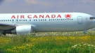 Air Canada sky marshals