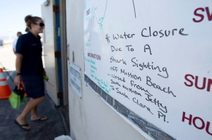 In this Aug. 26, 2011, file photo, lifeguard Amber Prestagard passes a sign alerting beach goers to a shark sighting at Mission Beach in San Diego. (AP Photo/Gregory Bull)
