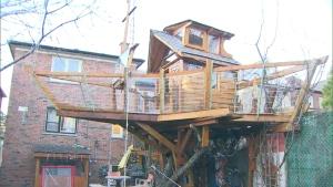 boat treehouse