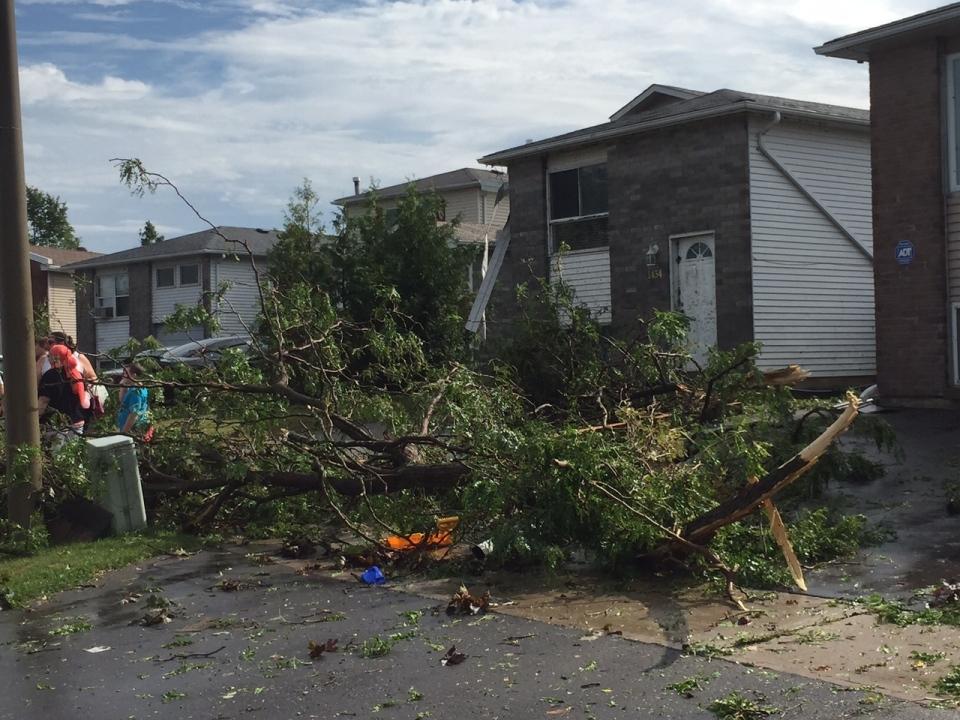 Trees lie scattered about an Oshawa neighbourhood following a powerful storm Saturday August 13, 2016. (Jamie Gutfreund /CP24)