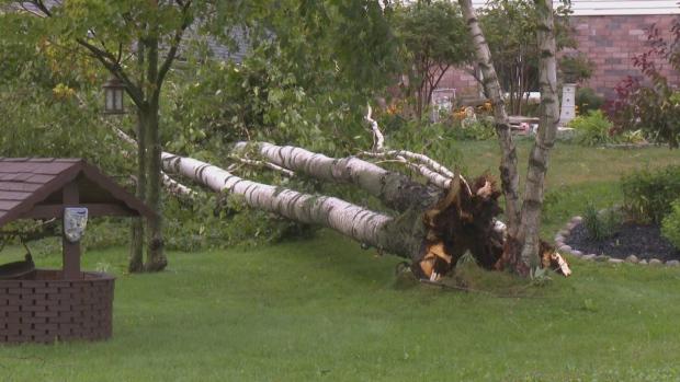 Tornado Confirmed In Beaverton-Area