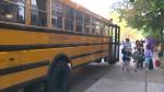 school, bus, driver,