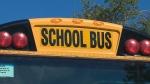 school bus,