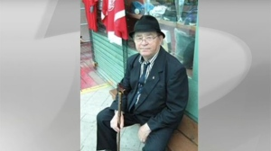 Arpad Horvath, 75, is seen in this submitted photo.