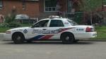 police, car,