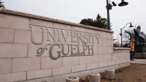A sign is seen at the entrance to the University of Guelph on Friday, March 24, 2017. (THE CANADIAN PRESS / Hannah Yoon)