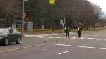 Scarborough, pedestrian, struck,
